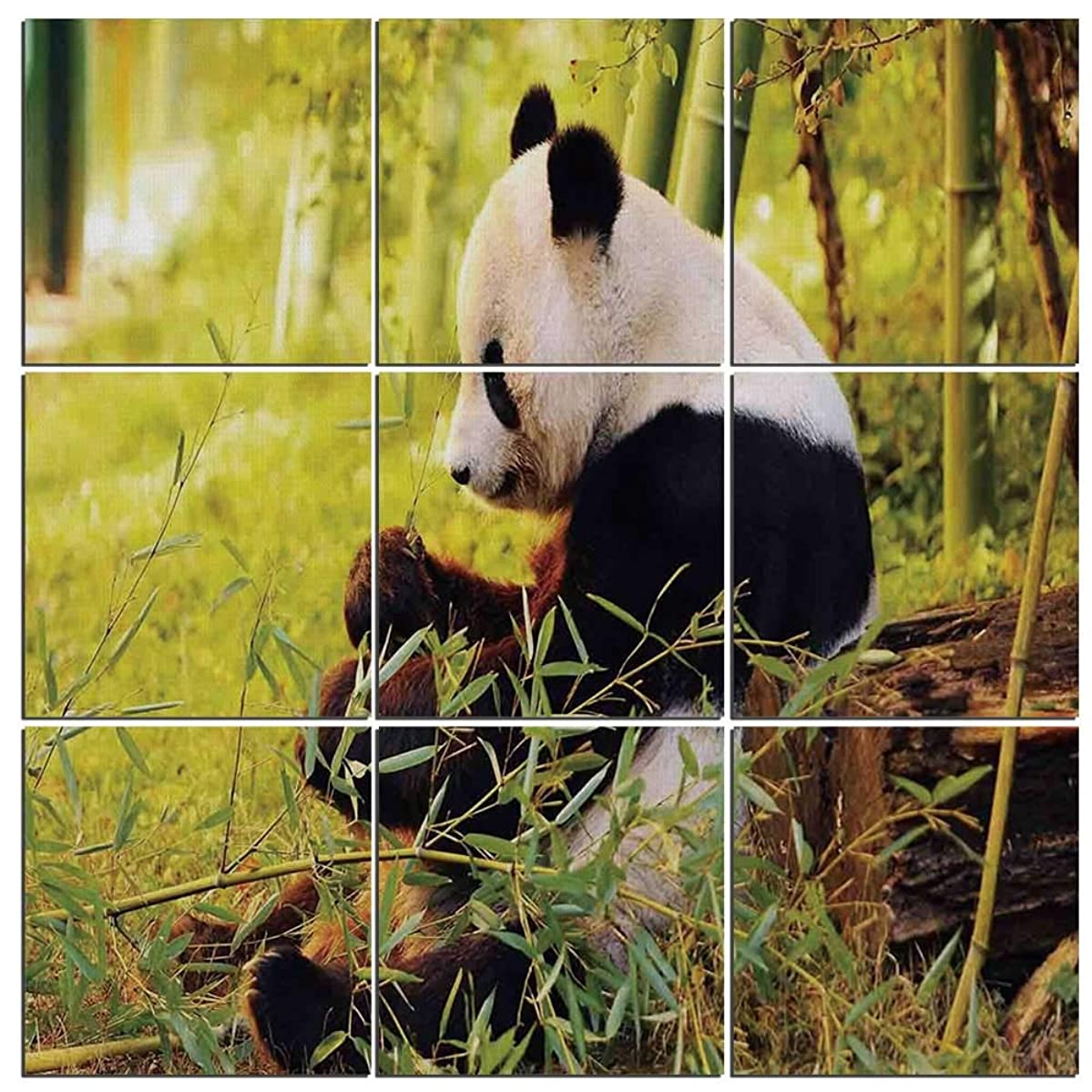 Modern 9-Piece Mural of Panda on Wood,Big Panda Sitting Forest Eating Bamboo Tree Trunk Foliage Wilderness Picture Print,60
