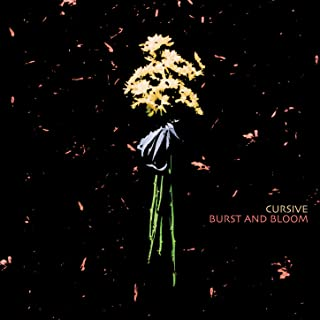 Best burst and bloom Reviews