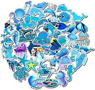 hydro shark