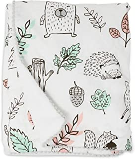 Lolli Living Baby Blanket with Sherpa. Kayden Printed Ultra-Soft Throw Blanket for Cribs and Strollers (40x30 inch)