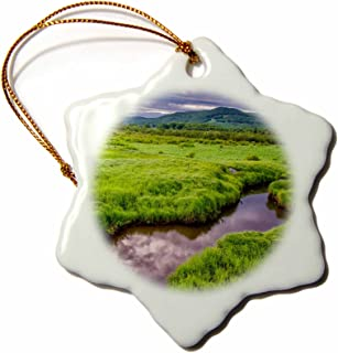 3dRose ORN_191015_1 USA, West Virginia, Davis. Landscape of The Canaan Valley. Snowflake Ornament, Porcelain, 3-Inch