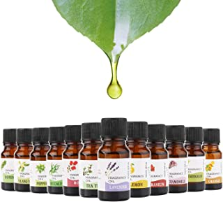 Best ylang ylang tree for sale Reviews
