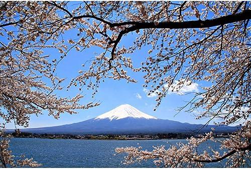 primera vez respuesta Puzzle House- Basswood Jigsaw Puzzles, Fuji Mountain & Cherry Cherry Cherry Blossom of Japan, Cut & Fit, 500 1000 1500 Piezas de Madera Juego de Juguetes en Caja Fotografía Arte Dibujo para Adultos y Niños  calidad garantizada