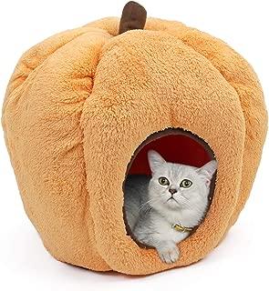 Best pumpkin dog bed Reviews