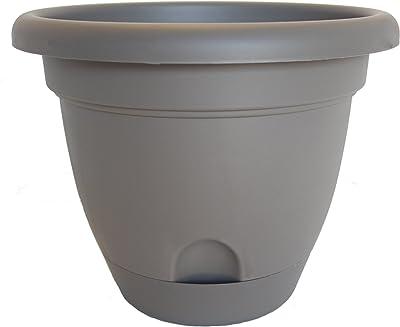 Bloem LP1260-6 6-Pack Lucca Self-Watering Planter, 12-Inch, Peppercorn