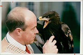 Vintage photo of Steve Ford with russian steppe eagle.