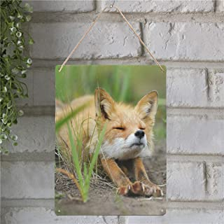 Custom Cute Fennec Fox New Wall Art Printing Metal TIN Sign Decor for Living Rooms,Offices Wall Decoration 12