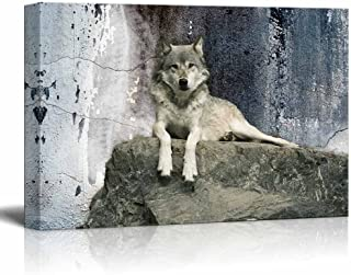 wall26 - Animal Theme Canvas Wall Art - A Wolf Laying on a Boulder - Giclee Print Gallery Wrap | Modern Home Decor Stretched & Ready to Hang - 16x24 inches