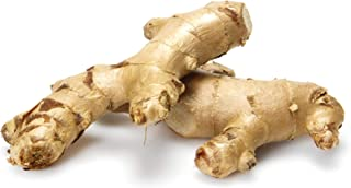 Root Ginger Conventional, 1 Each