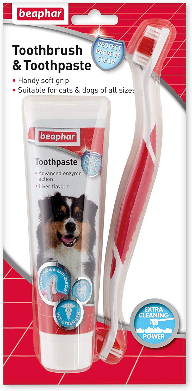 Outlet sale feature Pet-775094 Beaphar Max 67% OFF Toothbrush Pack Toothpaste