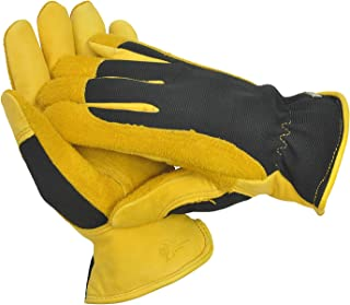 Best gold leaf gloves winter touch Reviews