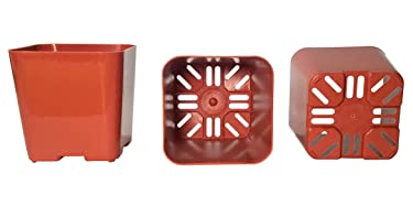 200-Pack, Water Dance Square Plastic Pots for Plants, 2-Inch. Color: Terracotta