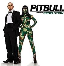 Best pitbull shut it down Reviews