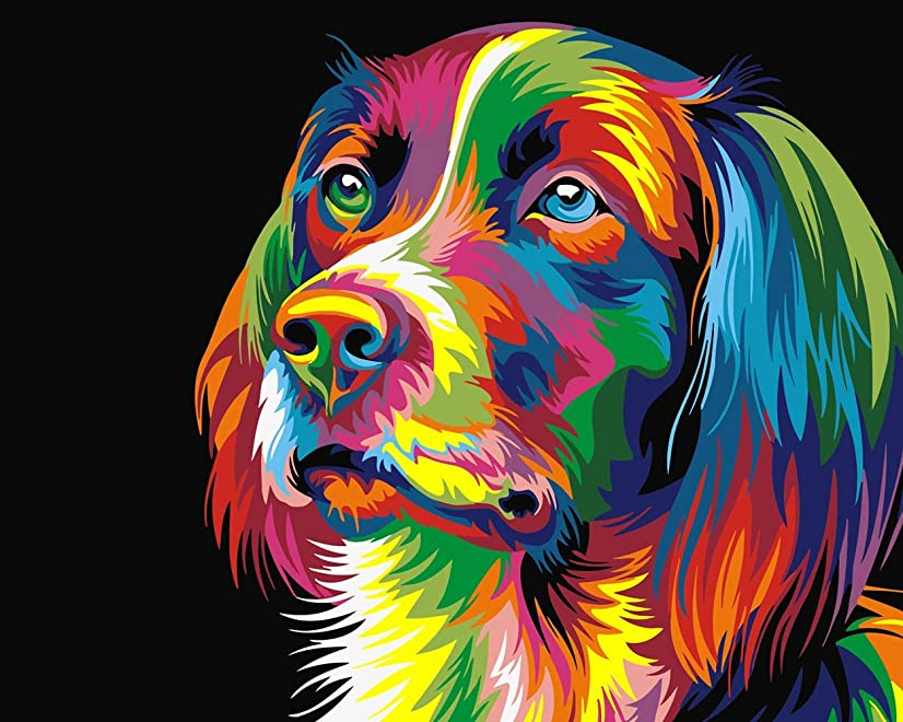 Toudorp Paint by Numbers Kits 16x20 inches Canvas Painting for Adults Beginner and Kids with Acrylic Paints and Brushes - Mr Colorful Dog (Without Frame)