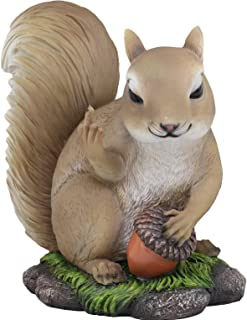 Best squirrel gifts and collectibles Reviews