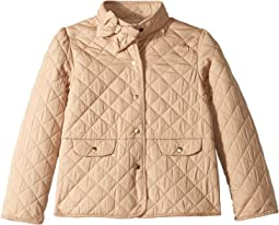 Quilted Bow Jacket (Toddler/Little Kids/Big Kids)