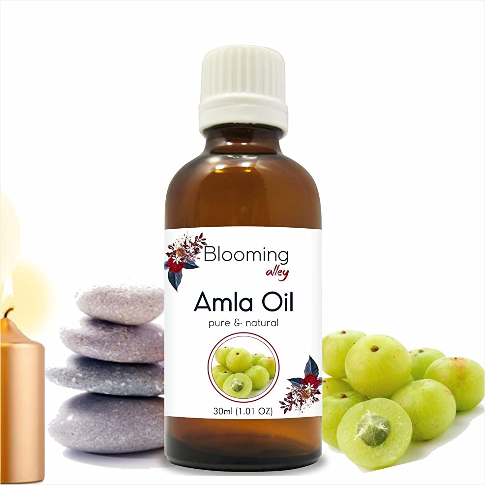 保護する縫い目なんでもAMLA Indian Gooseberry (Emblica officinalis) Infused Oil 30ML