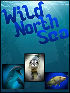 Wild North Sea: Footage Never Seen Before