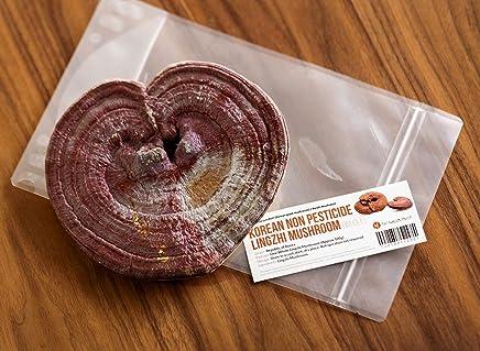 Premium Grade Lingzhi Mushroom, Reishi Mushroom, Reshie Mushroom, Ganoderma Lucidum_영지버섯 (Whole and not Cut)_Non Pesticide_Medicinal Grade Herbs from S.Korea