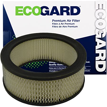 Air Filter XA4883 Ecogard