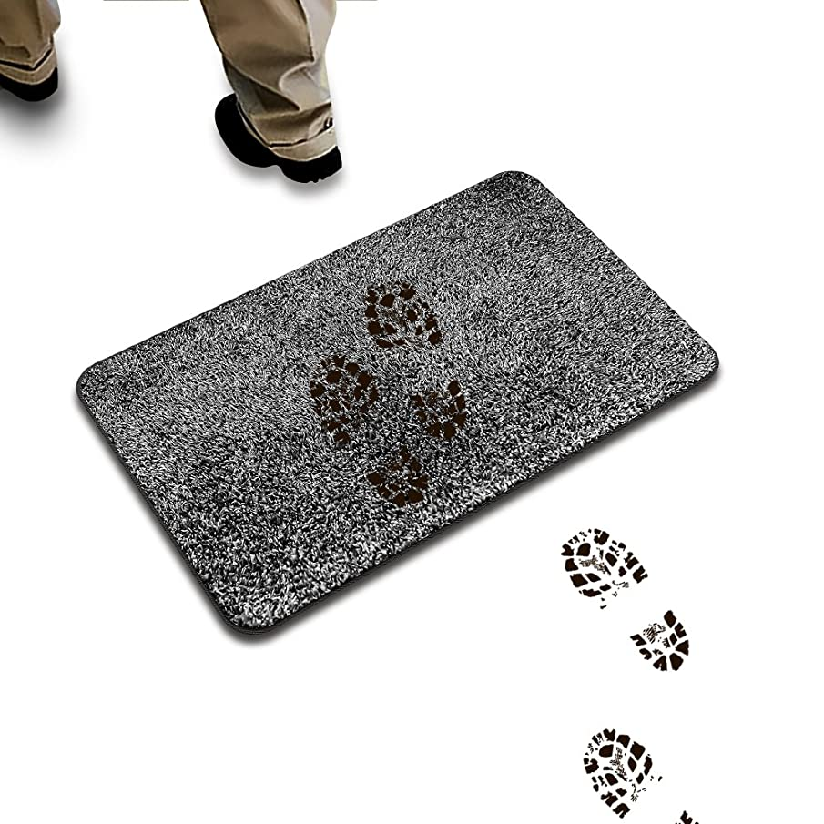 klyfar Super Absorbs Mud & Water Remove Dirts Doormat, Magic Step to Clean Mat Indoor Non Slip Door Mat Entrance Self-Cleaning Pad