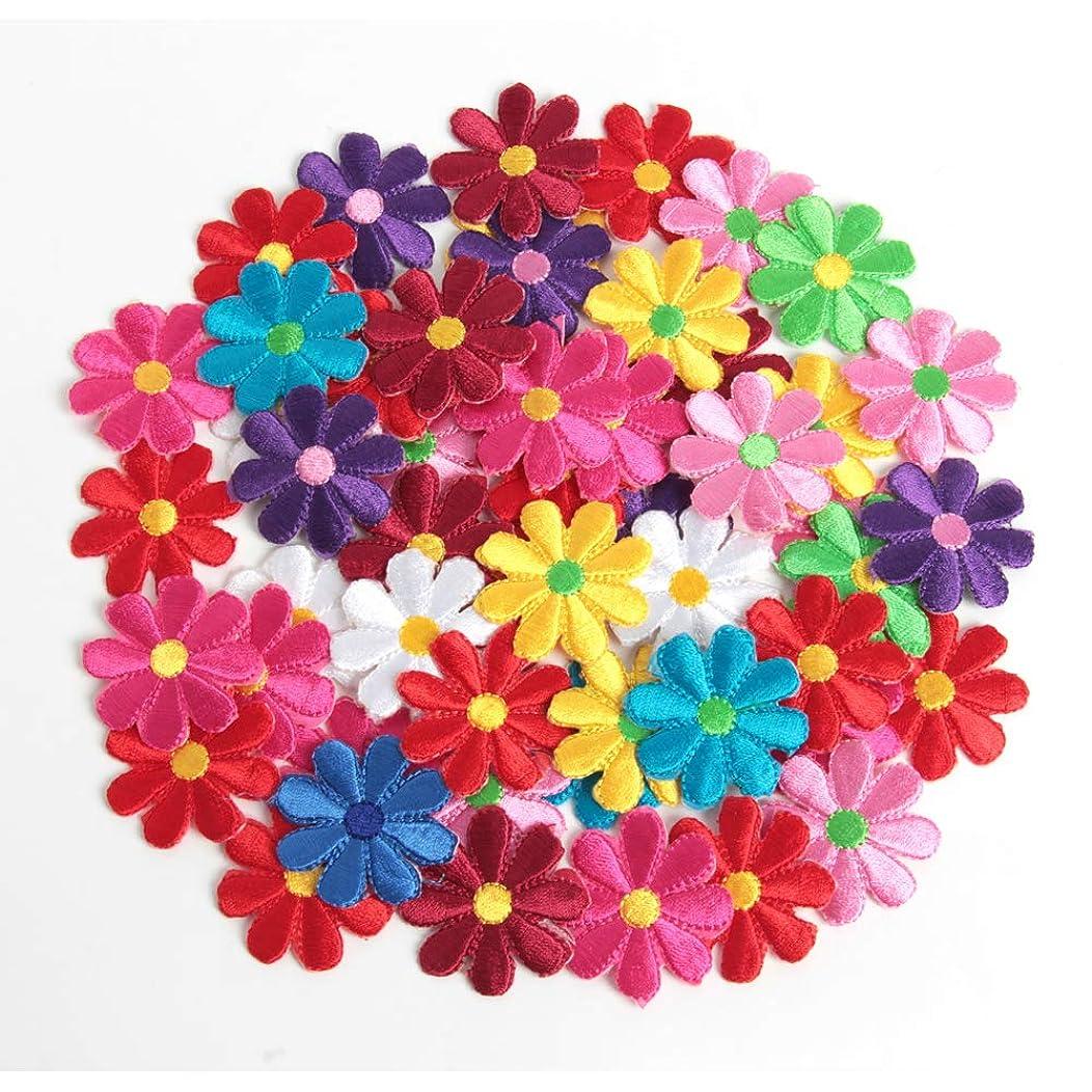 Happy Shop 40 Pcs Flower Pattern Lace Embroidery Trim Appliques for Sewing Trims Clothes,Craft DIY