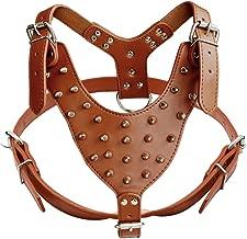 Didog Leather Spiked & Studded Medium & Large Dog Harness for Pit Bulldog Mastif