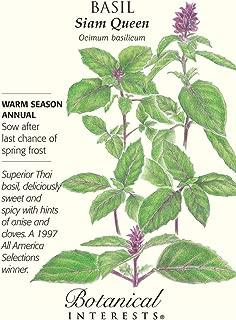 Basil Thai Siam Queen Heirloom Seeds 150 Seeds