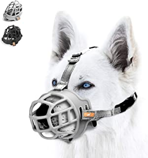 muzzle for shiba inu