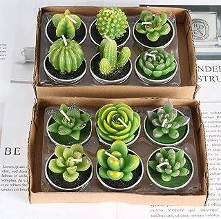 comprar comparacion BLUEDRM Vela Perfumada, Conjunto de Velas Artesanales Plant Cactus de 12 Piezas
