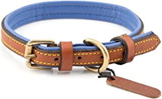 PetsUp Royal Leather Dog Collar Neck Belt (Tan/Blue, 11.0 to 13.5 Inches)
