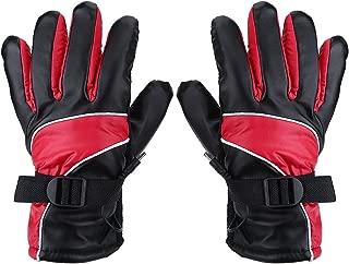 Motorcycle gloves, Motorcycle 12V Heated Gloves Outdoor Hunting Ski Racing Winter Warm Gloves Waterproof Windproof (Red)