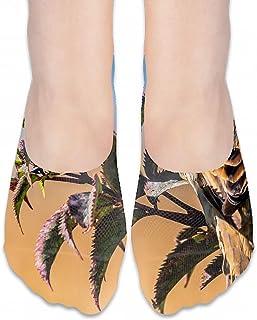 フットカバー レディース ソックス靴下 ビジネスソックス 夏用 滑り止め付き 無地 プルメリアの低木の花