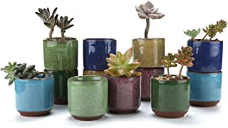 T4U 2.5 Inch Small Ceramic Succulent Planter Pot with Drainage Hole Set of 12, Ice Crack..