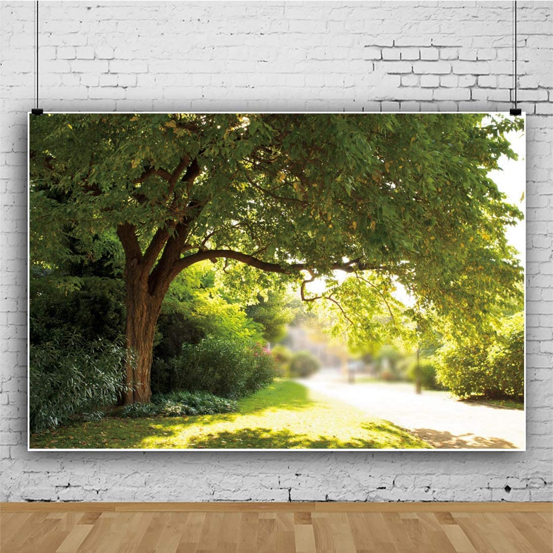 DaShan 8x5ft Spring Forest Backdrop Woodland Spring Trees Green Grassland Vacation Picnic Outing Park View Photography Background Grassland Park Trees Kid Baby Portrait Photo Studio Props