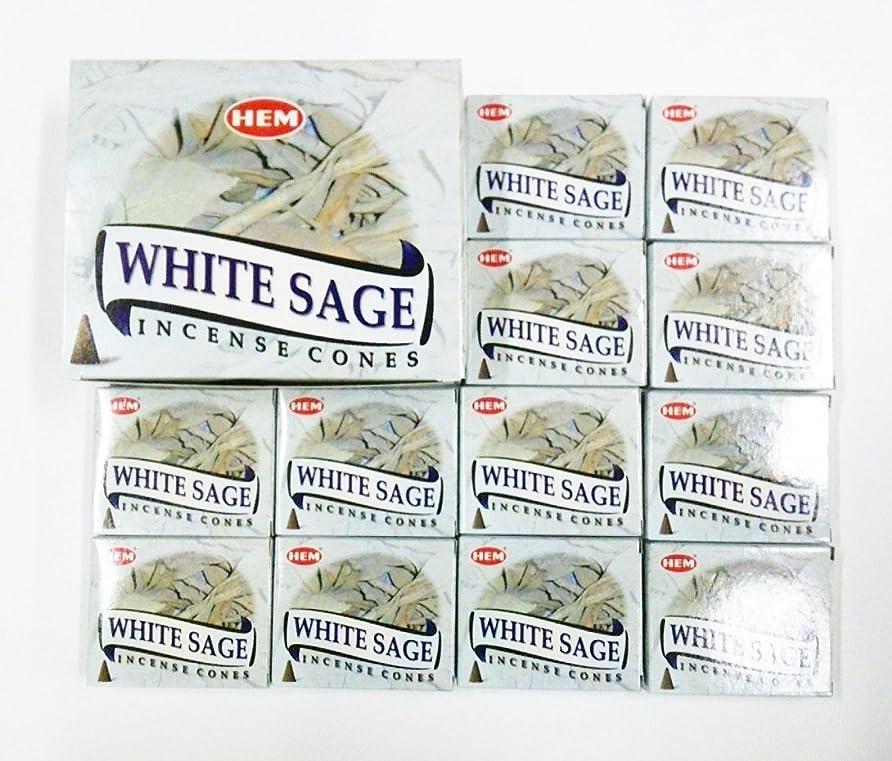 キャプション摂氏度注入HEM WHITE SAGE ホワイトセージ コーン12箱入り