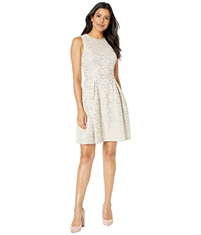 Vince Camuto Fused Lace Fit and Flare Dress (Blush) Women