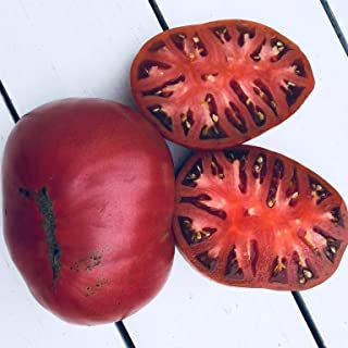 Tomato Black Russian 15 Seeds Heirloom Spring Vegetable Garden Sweet Smoky Fruit