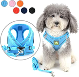 S, Blue Tineer Pet Dog Plaid Bowtie Harnais avec Leash en Nylon pour la Marche ou la Formation Chiot Chat