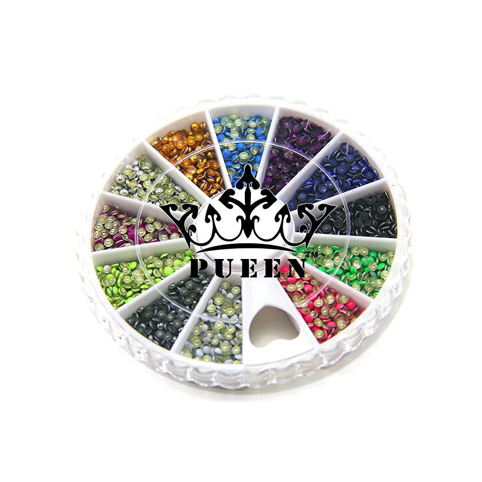 PUEEN 3d Nail Art Wheel 2mm Round Metal Studs Wheel 6 Neon and 6 Metallic Colors Gold & Silver for Cellphones & Nails Decorations Over 2400pcs
