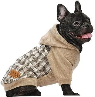 dog sweaters designer
