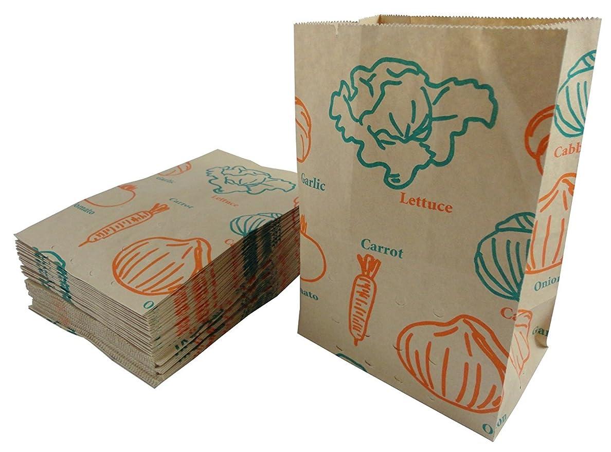 ギャング二辞任ネクスタ キッチン 水切りゴミ袋 紙製 水切りゴミ袋50枚×2個