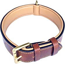 Best leather collar for dog Reviews