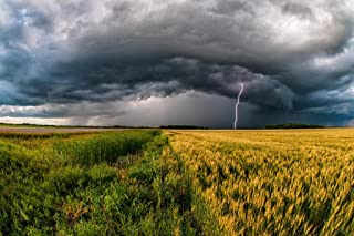 Storm Cloud with Lightning Over Wheat Field Photo Photograph Cool Wall Decor Art Print Poster 36x24
