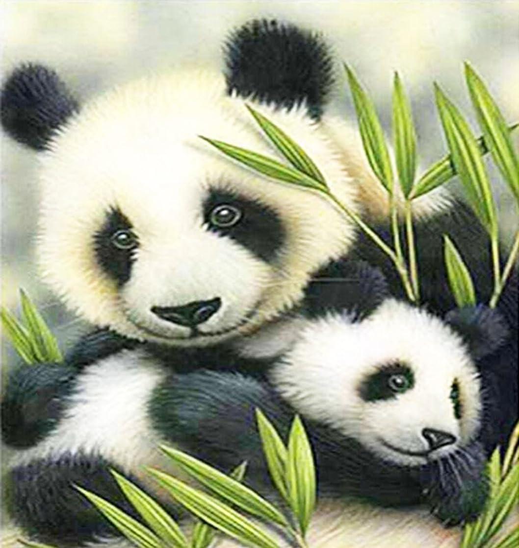 DIY Cartoon Colorful Handmade Needlework Embroidery Kits Diamond Painting Panda Pattern Cross Stitch for Gift,11.8x11.8 Inch