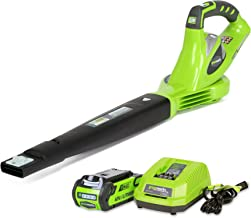 Best greenworks 40v blower vacuum Reviews
