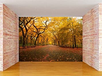 Buy Envouge Wallpaper Nature 3d Design Washable 5ft X 4ft For Bedroom Living Room Online At Low Prices In India Amazon In