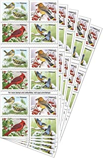 Songbirds in Snow Forever First Class Postage Stamps brighten cold winter days (5 sheets of 20 Stamps)