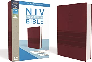 niv bible for mac