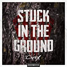 Best stuck in the ground Reviews
